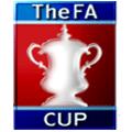 İngiltere Federasyon Kupası